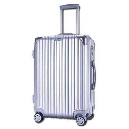 All-Match Trendy 20 Inch Luggage Case (Silver)